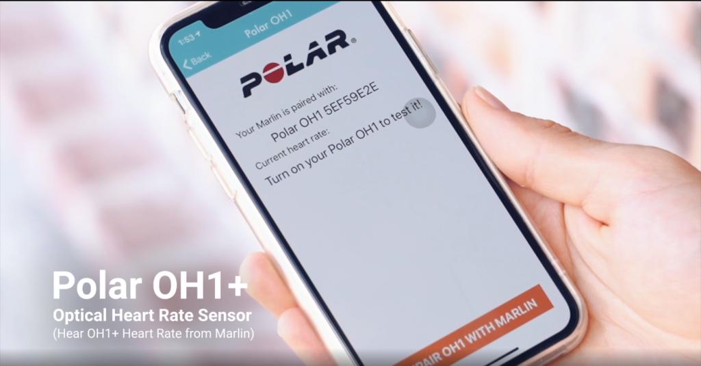 Polar OH1 8